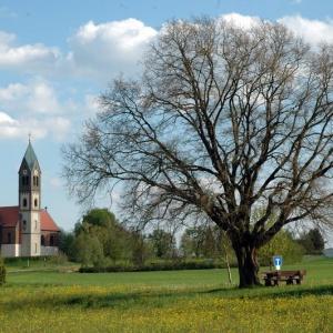 Ortsansicht von Grossenried
