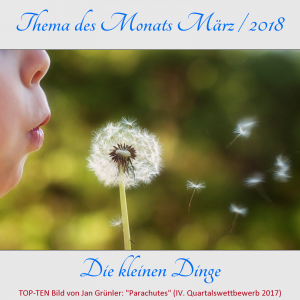 TdM-2018-03-die_kleinen_dinge