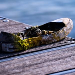 Abandonend on Gardasee