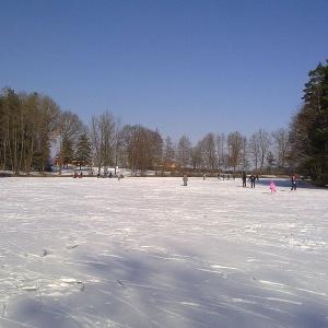Eislaufen auf dem Krummweiher