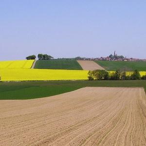 Landschaftsimpression